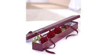 Red Rose Trio in Presentation Wrapping